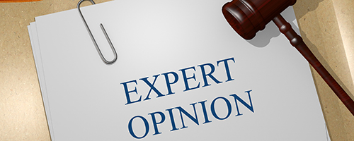 Building Surveying - Expert Witness